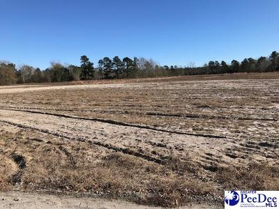 Johnsonville Residential Lots & Land For Sale: 643 Ashley Road