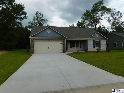 Florence SC Single Family Home For Sale: $140,897