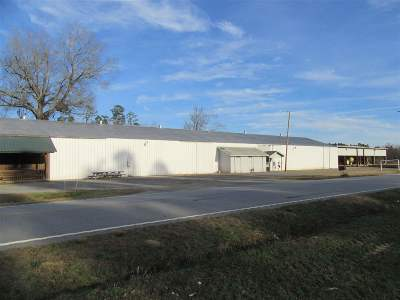Lake City Sc SC Commercial For Sale: $350,000