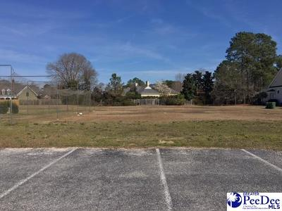 Florence, Flrorence, Marion, Pamplico Commercial For Sale: 1500 Alice Drive