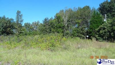 Residential Lots & Land Uc/Show For Back Up: Lot 6 Dingo Lane