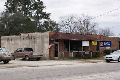 Dillon County Commercial For Sale: 207 Richard Temple Blvd