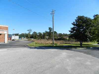Residential Lots & Land For Sale: Mountain Laurel Court
