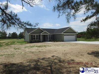 Latta Single Family Home Uc/Show For Back Up: 286 Pocosin Road