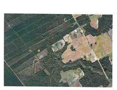 Florence County Residential Lots & Land For Sale: Old River Rd.