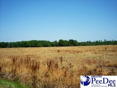 Latta SC Residential Lots & Land For Sale: $170,000
