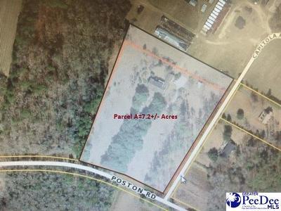 Johnsonville Single Family Home For Sale: 233 Poston Road