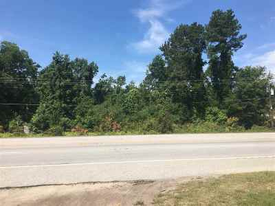 Commercial Lots & Land For Sale: S Main Street