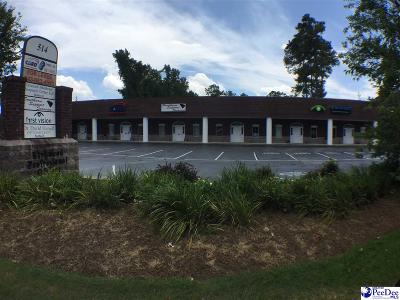 Florence, Flrorence, Marion, Pamplico Commercial For Sale: 514 Second Loop Road