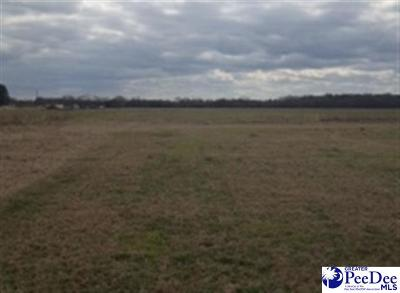 Scranton SC Residential Lots & Land For Sale: $12,000