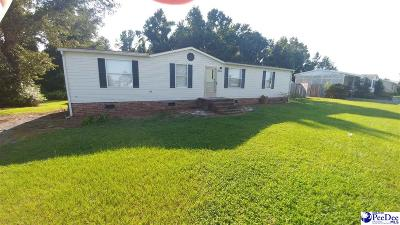 Florence Mobile/Manufactured For Sale: 2244 Grandview Drive