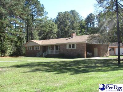 Darlington Single Family Home For Sale: 431 Gilchrist Rd.