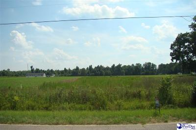 Pamplico Residential Lots & Land For Sale: S Pamplico Hwy Tract 2