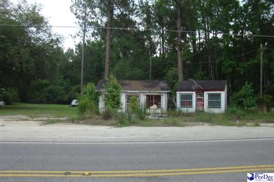 Florence, Flrorence, Marion, Pamplico Commercial For Sale: 2362 Rowell Court