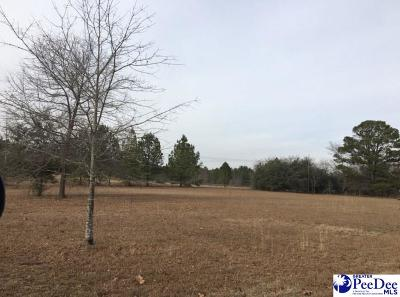 Residential Lots & Land For Sale: Lot 4 Summer Place