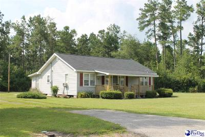 Lake City Single Family Home For Sale: 119 N McClam Rd