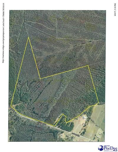 Marion SC Residential Lots & Land For Sale: $84,900