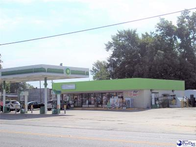Dillon County Commercial For Sale: 203 S Highway 301