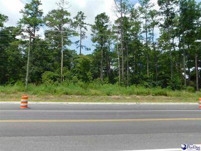 Florence, Flrorence, Marion, Pamplico Commercial Lots & Land For Sale: 2651 TV Rd