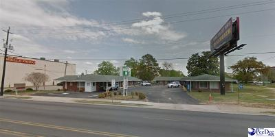Florence, Flrorence, Pamplico Commercial For Sale: 414 S Irby Street