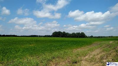 Johnsonville Residential Lots & Land For Sale: Hwy 58 Vox Highway