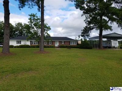 Marion Single Family Home For Sale: 4034 S Hwy 41a