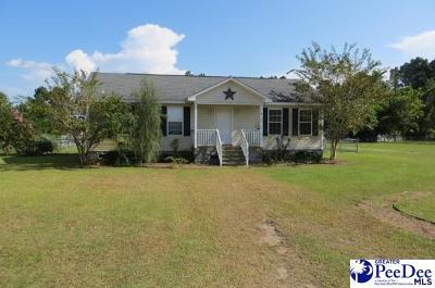Darlington Single Family Home For Sale: 2304 Cashua Ferry Rd