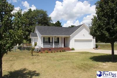 Hartsville Single Family Home For Sale: 1066 Wellington Dr