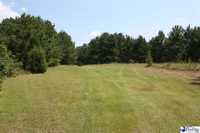 Johnsonville Residential Lots & Land For Sale: Diamond Branch Rd