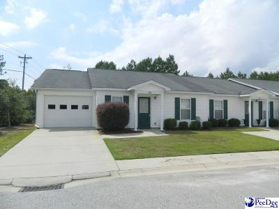 Effingham Single Family Home For Sale: 3246 Pleasant Valley Circle