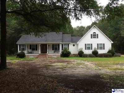 Darlington Single Family Home For Sale: 1044 Harmony Hall Drive