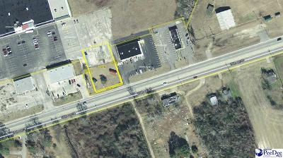 Florence, Flrorence, Marion, Pamplico Commercial Lots & Land For Sale: Tbd E Hwy 76