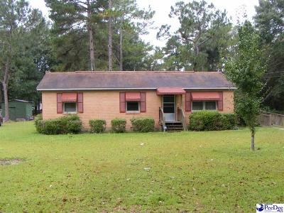 Darlington Single Family Home For Sale: 1420 Mechanicsville Hwy