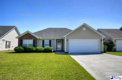 Effingham Single Family Home Uc/Show For Back Up: 3045 Red Berry Circle