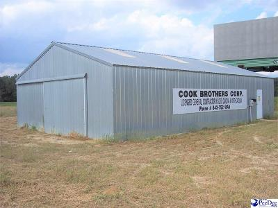 Dillon County Commercial For Sale: 1341 Briar Road