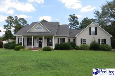 Hartsville Single Family Home For Sale: 355 Pointer Dr