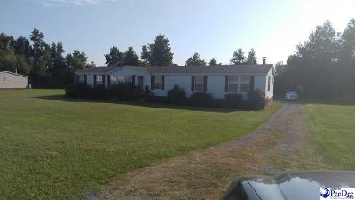 Darlington Single Family Home Uc/Show For Back Up: 1945 High Cotton