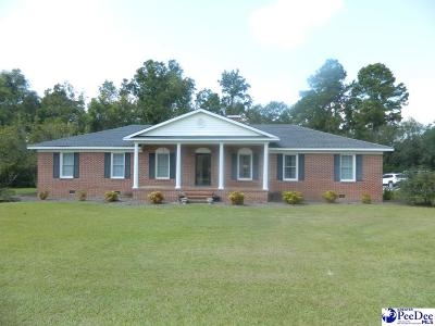Johnsonville Single Family Home For Sale: 443 Possom Fork Road