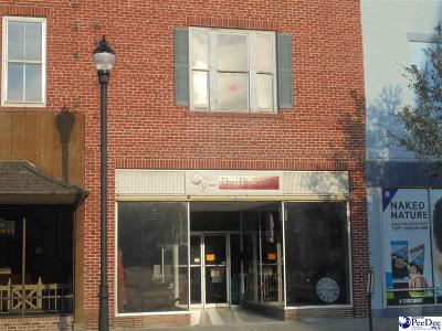 Florence, Flrorence, Marion, Pamplico Commercial For Sale: 314 N Main St.