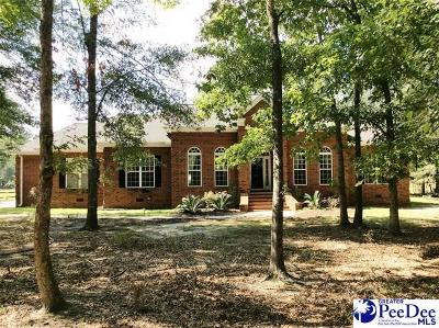 Florence Single Family Home For Sale: 3527 Winning Colors Dr