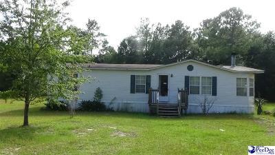 Darlington Single Family Home For Sale: 1236 Myrtlewood Dr.
