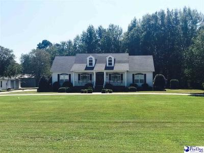 Darlington Single Family Home Uc/Show For Back Up: 569 Gilchrist Road
