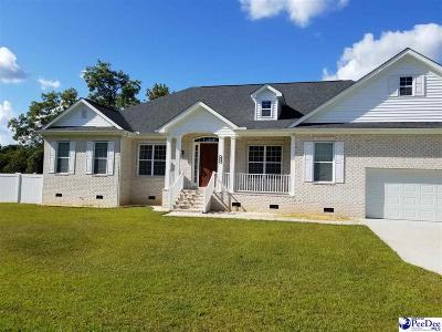 Kingstree Single Family Home For Sale: 405 Ashton Avenue