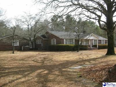 Florence Single Family Home For Sale: 2801 Pamplico Hwy