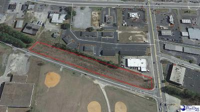 Florence, Flrorence, Marion, Pamplico Commercial Lots & Land For Sale: 2161 Hoffmeyer Rd