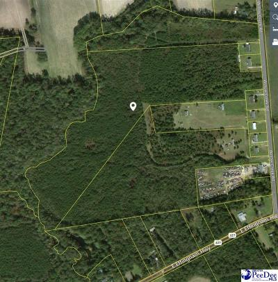 Effingham Residential Lots & Land Active-Extended: Willow Creek Road