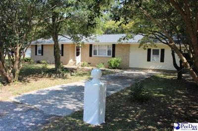 Hartsville Single Family Home For Sale: 249 Woodwind Drive