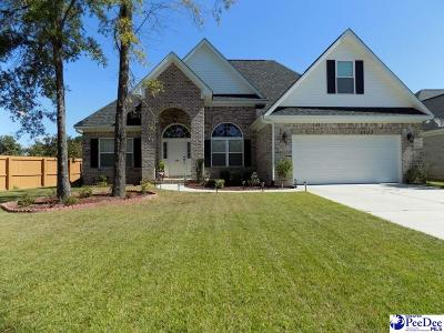 Florence Single Family Home Uc/Show For Back Up: 498 Cove Pointe Drive