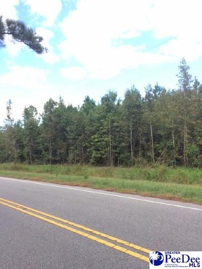 Pamplico Residential Lots & Land For Sale: 1.1 Acre E Lynhurst Road