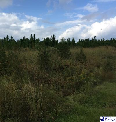Florence, Flrorence, Marion, Pamplico Commercial Lots & Land For Sale: 1939 N Williston Road